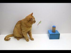 Сделайте игрушки для котов своими руками!2