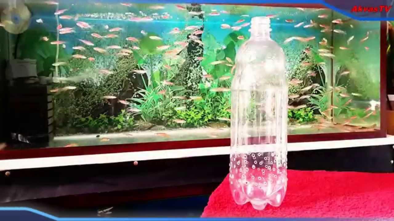 Самодельный эффективный биофильтр для аквариума