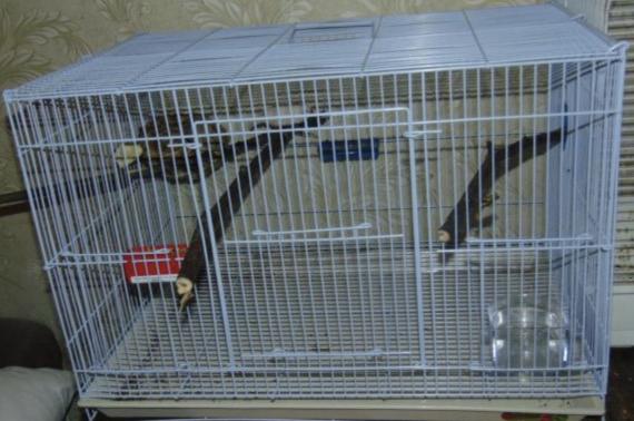 Лучшие клетки для птиц Триол