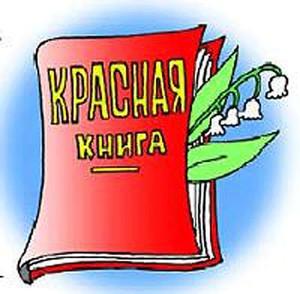 картинка красная книга