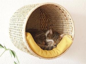 Мягкий дом для котов
