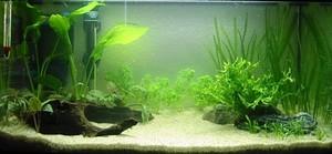 Изготавливаем аквариум своими руками